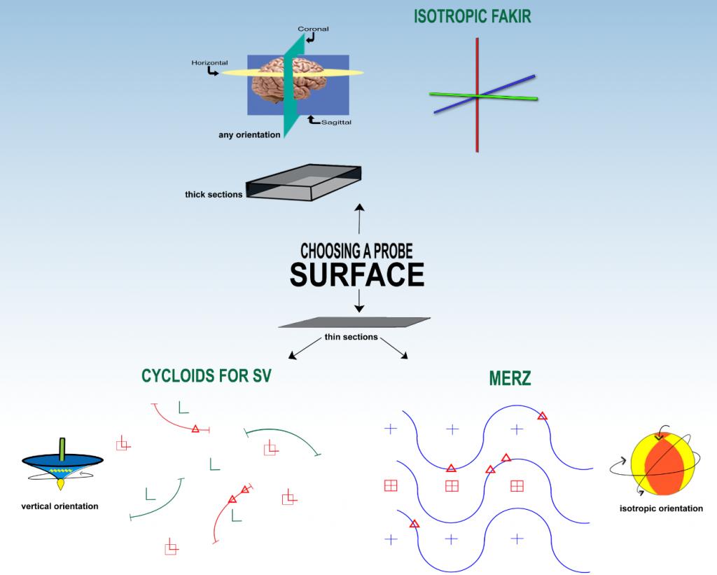 Surface_shape
